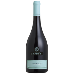 Capoani - Gamay Nouveau 2021