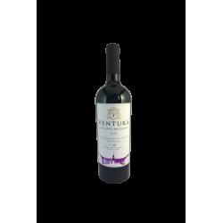 Ventura Vinhos de Autor -...