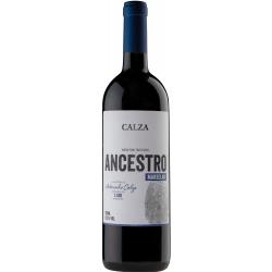 Calza - Ancestro Marselan