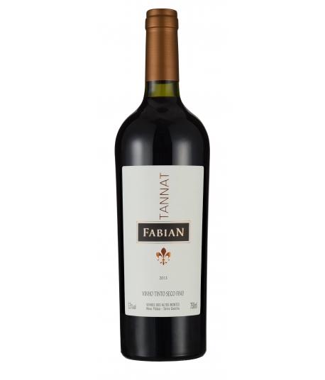 Fabian Tannat 2013